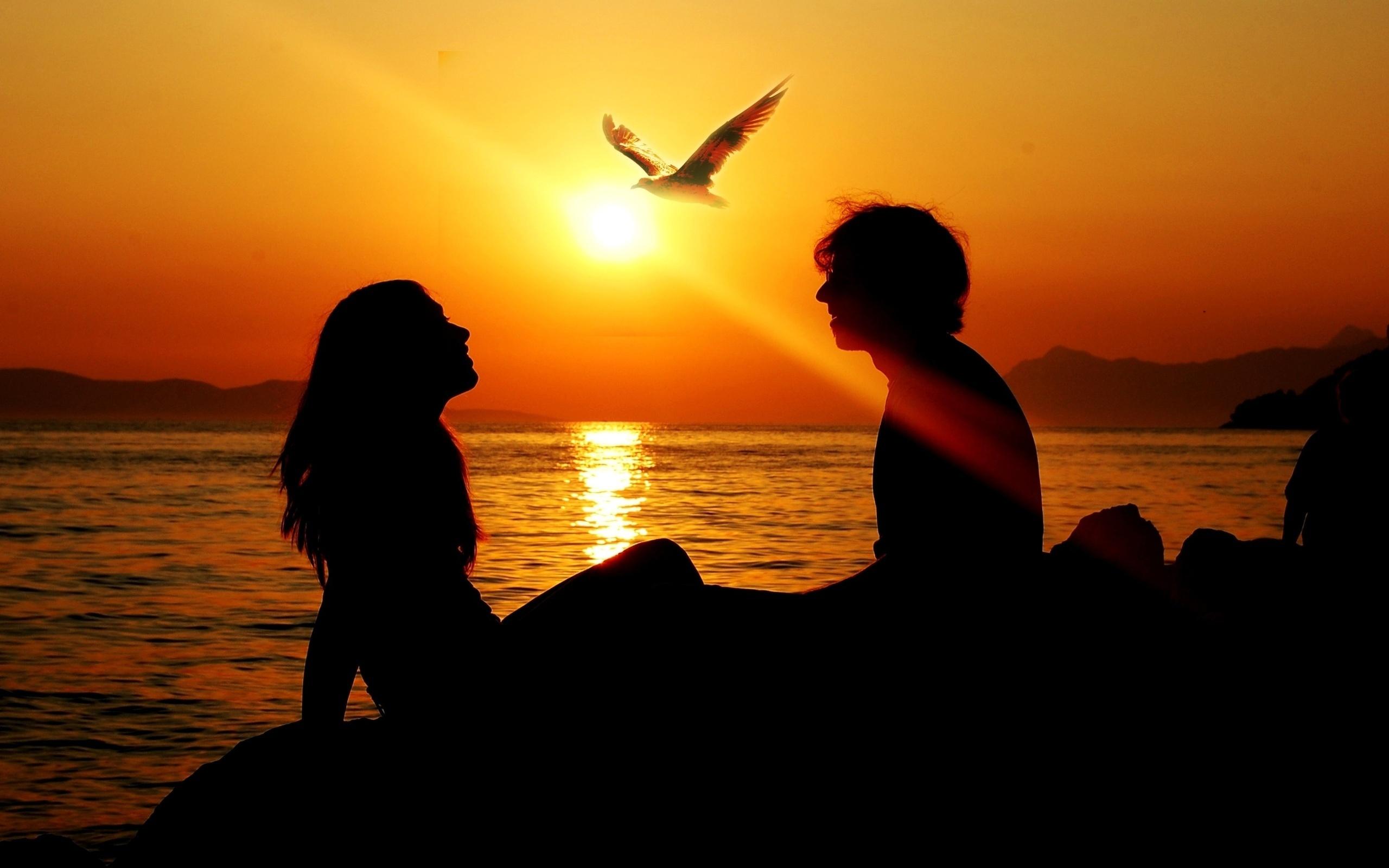 Обои на монитор | Любовь | закат, море, девушка, парень, птица
