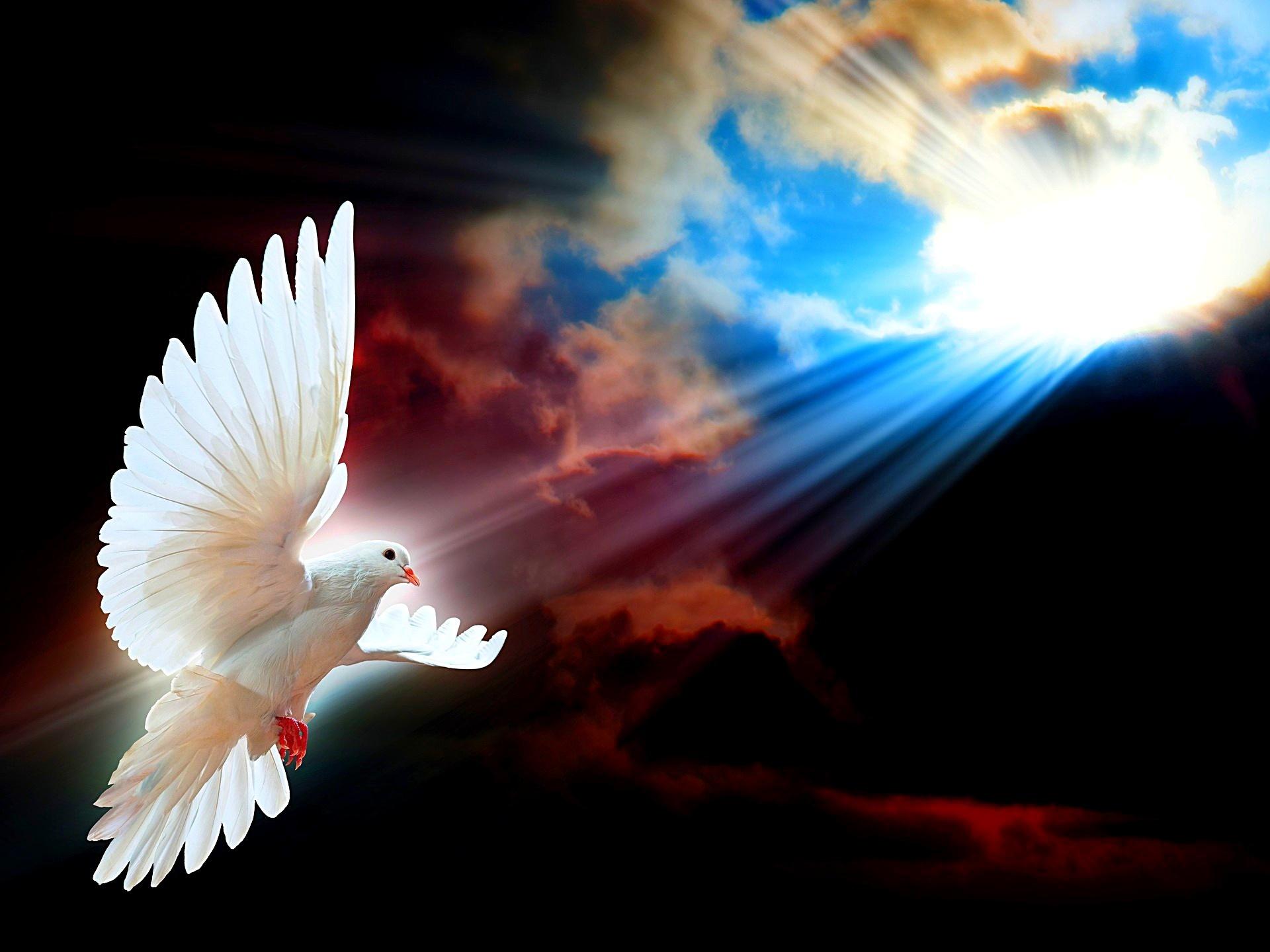 Христианские картинки на тему свет
