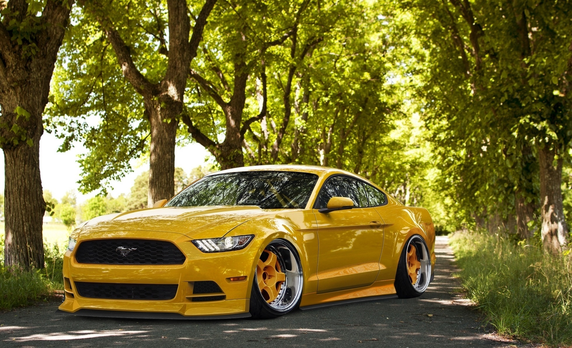 Обои красава, форд, тюнинг. Автомобили foto 6