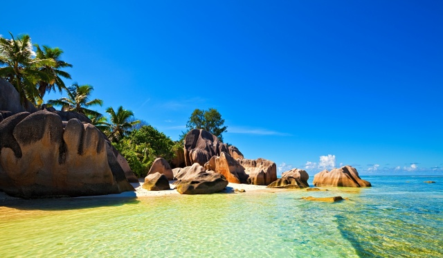 nature, island, Seychelles, Seychelles, tropics, palm trees, the beach, stones, rock