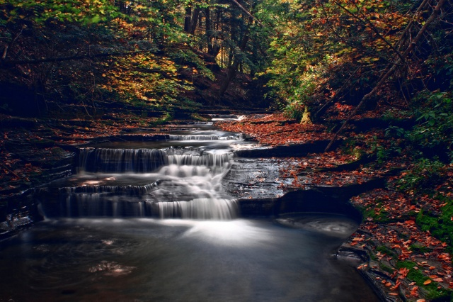 nature, autumn, stream, cascades, river, forest, trees, leaves