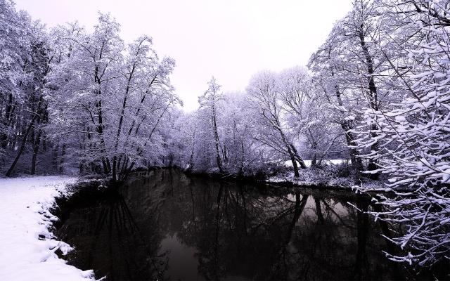 парк, природа, зима, красиво, река, рыбалка