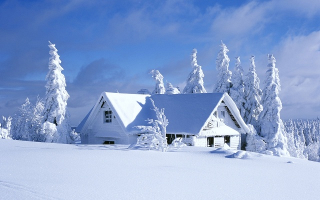 winter, the house, forest, snow, house and comfort, nature