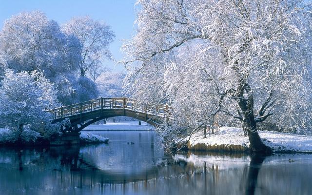 зима, река, Дельта, снег, деревья, гора
