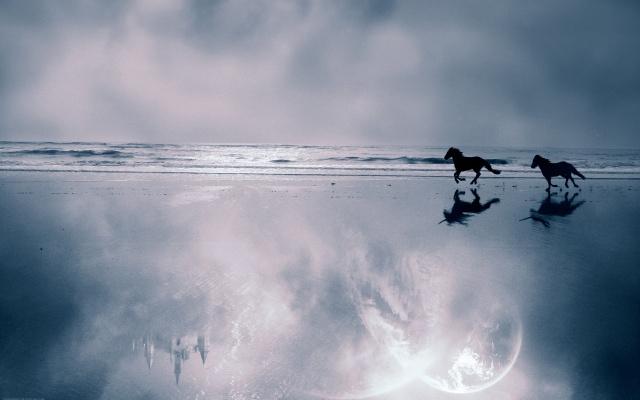 ocean, water, sand, horse, run