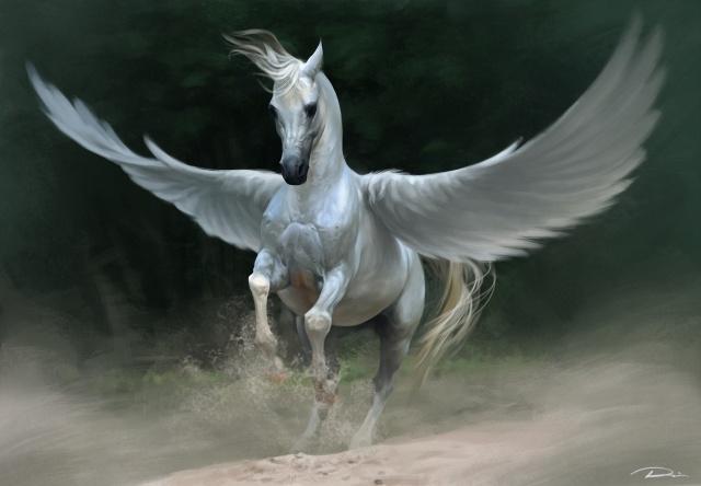 art, Lin Zhou, fantasy, pegas, kůň, bílá, křídla, prach, písek