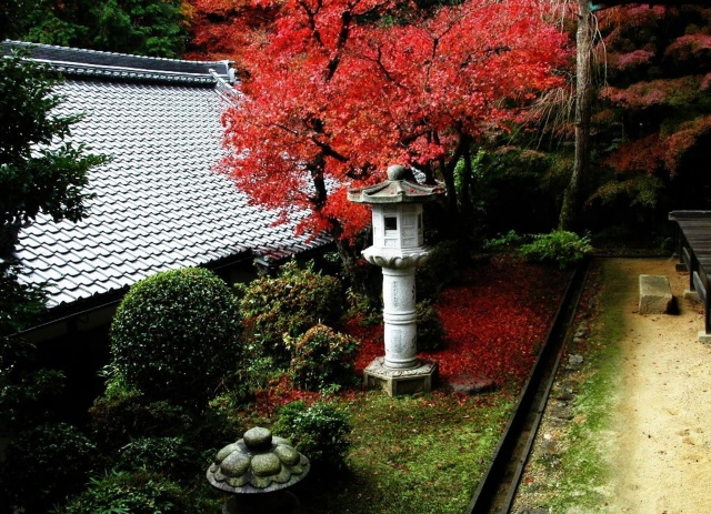 small beautiful garden, Japan