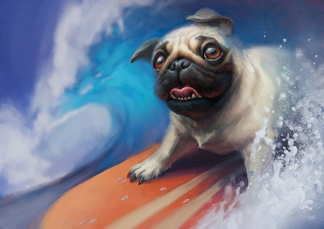 dog, picture, surfing, the situation, extreme, wave, Pug