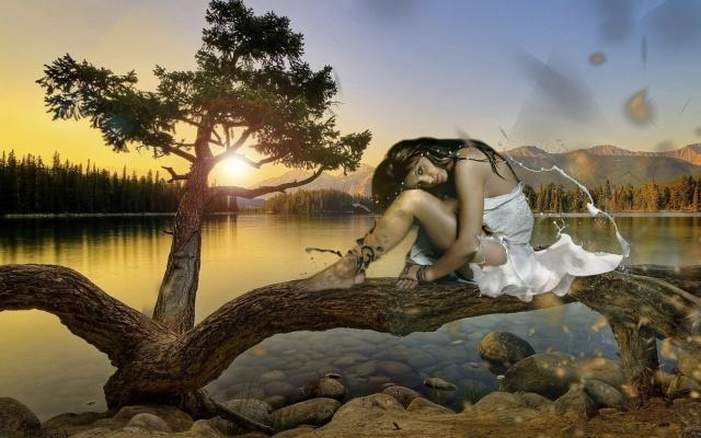 самотньо, жінка, дівчина, озеро, води, черепаха, дерево