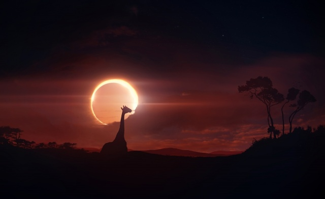 солнечное затмение, жираф, долина, деревья, силуэты, креатив