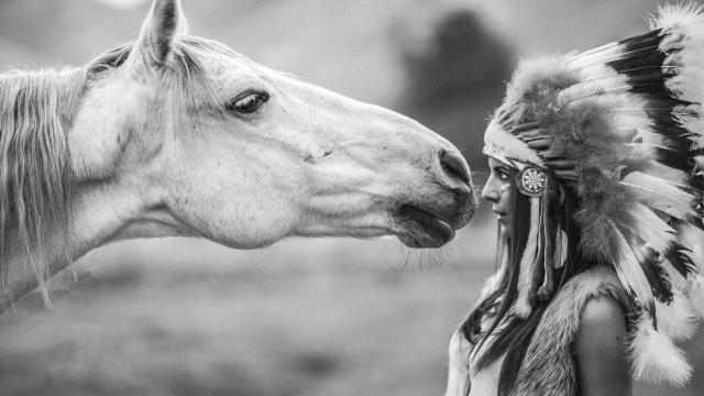 конь, индеанка, без слов...