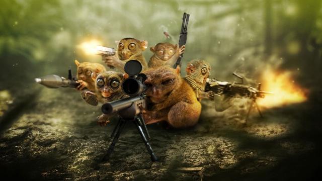 животные, лемур, снайпер, оружие