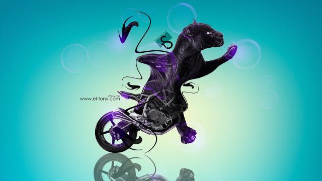 Tony Kokhan, NCR, M4, Fantasy, animal, Moto, bike, Cat, Panther
