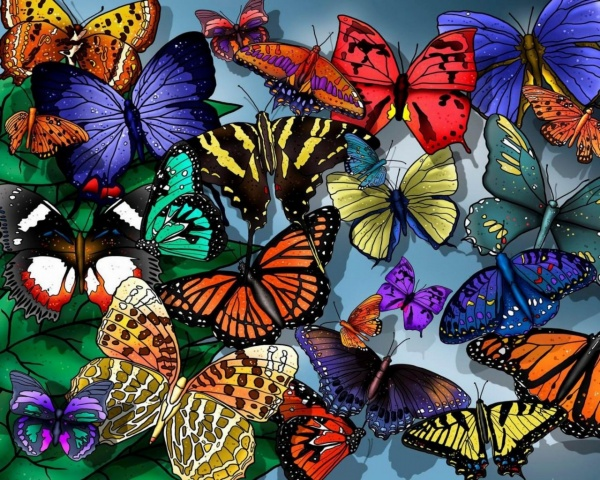 butterfly, beautiful, easy