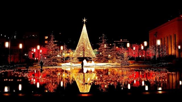 tree, christmas, light, city, night