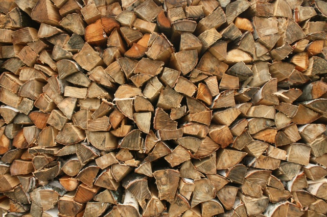 firewood, tree, birch, Texture