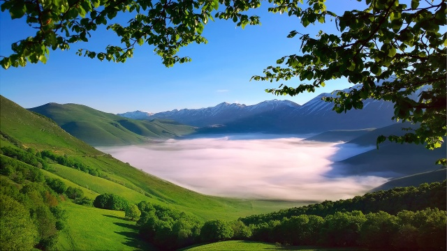 Italy, The Apennine mountains, mountain range, Monti Sibillini, valley, morning, fog, trees, branches