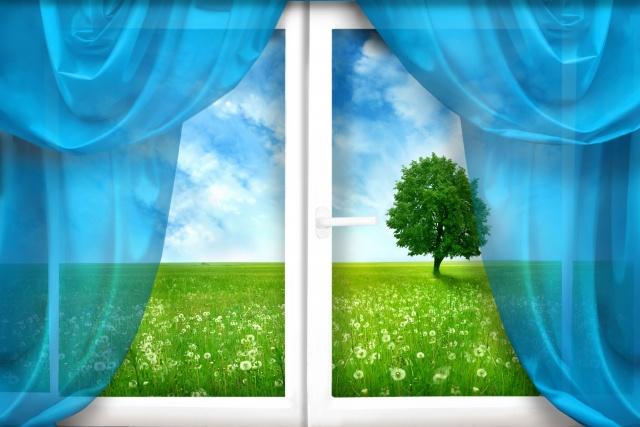 okno, záclony, pole, pampelišky, tráva, strom