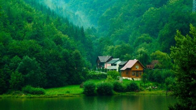 лес, деревья, КУСТЫ, зелень, домики, река