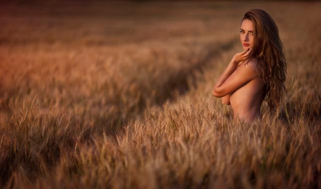 девушка, шатенка, позирует, в поле, пшеница, ситуация, минимализм, макро, фото