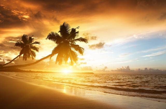 лето, пляж, пальмы, небо, солнце, закат, море, фотошоп