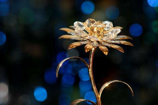 огни, цветок, ночь