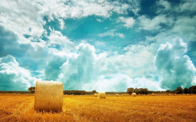 nature, field, stack, Hay, the sky, clouds, Holland, trees, beautiful