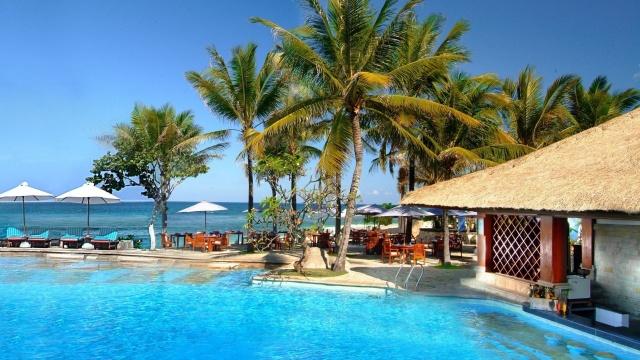 palmové, ostrov, moře, nebe, léto, krásné