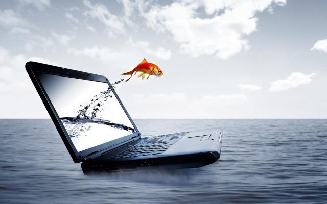 нотбук, рибка