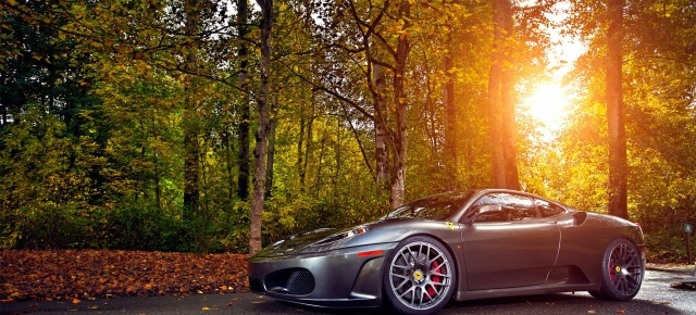 феррари, road, forest, light, the sun, autumn, ferrari