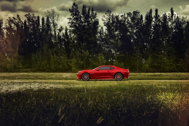 Chevrolet, Camaro, Červená, superauta, cesta, příroda, stromy, zataženo
