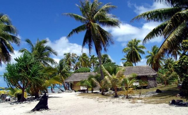 тропіки, пальми, берег, пісок, дім та затишок