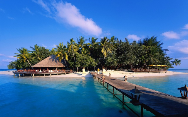 nature, island, resort, tropics, palm trees, the ocean, Bungalow