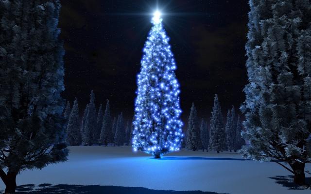 дерево, Рождество, свет, ночь, снег