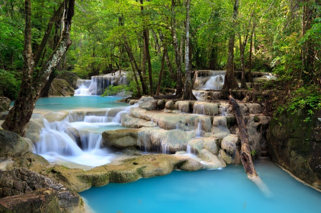 nature, river, stones, waterfall, cascades, forest, trees