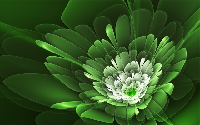 abstraction, green, flower, white, background