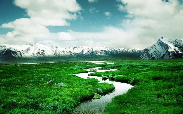 Дельта, река, зеленый, путь, воды, поля