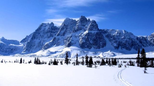 гори, сніг, їли, краса