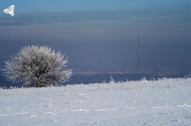 зима, дерево, небо, краєвид, Геліос 44м