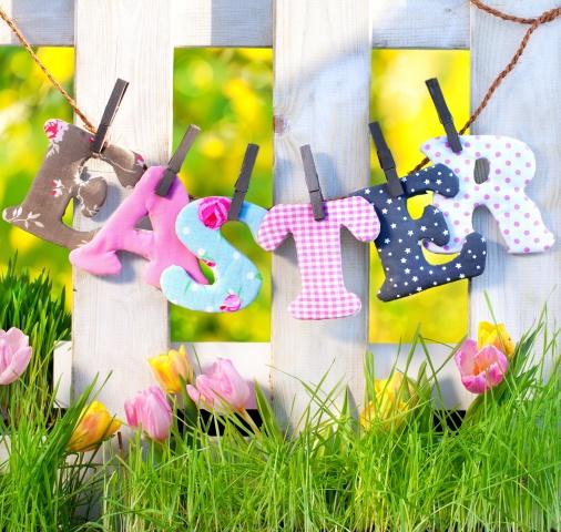 jaro, tráva, na jaře, tulipány, příroda, květiny, tráva, plot, plot