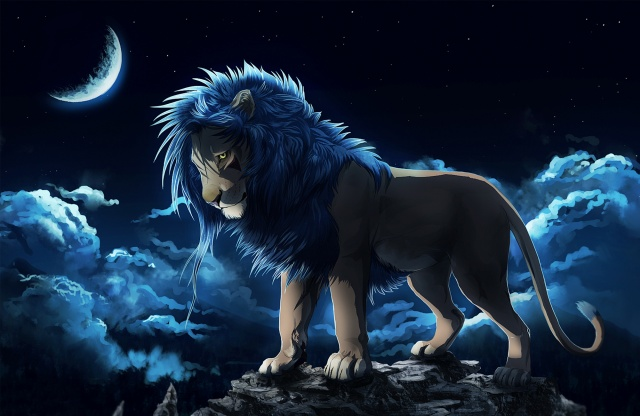 lion, MANE, rock, the moon, night, clouds