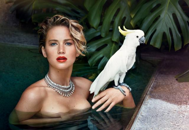 jennifer lawrence, face, actress, hand, Parrot