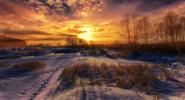 снег, природа, небо, солнце, деревья