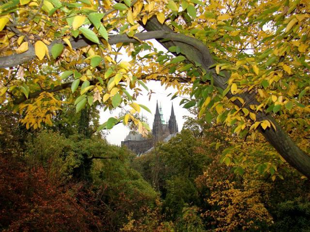 nature, autumn, trees, The BUSHES, leaves, castle, Prague, Градчаны