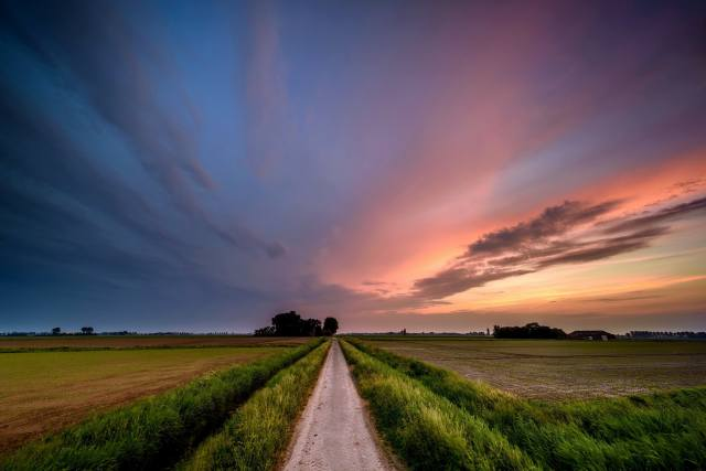 sunset, field, road