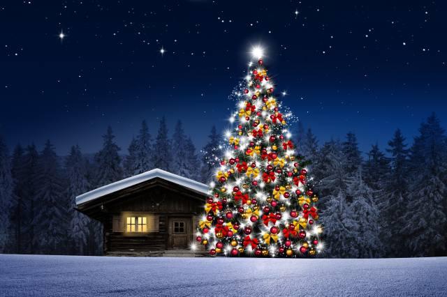 art, fantasy, holiday, tree