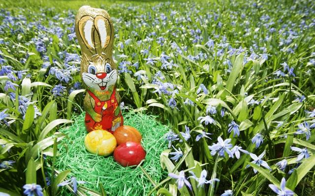 hare, chocolate, EGGS, flowers, grass, basket, Easter