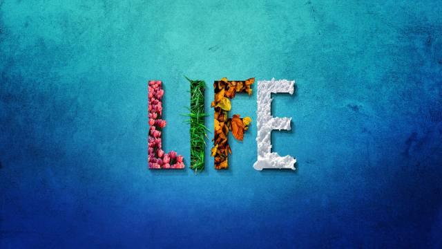 nápis, život, modrá, pozadí