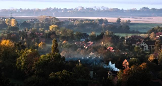 природа, краєвид, луки, поля, село, дерева, туман