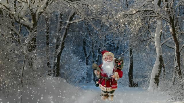 3d, цифровое искусство, природа, зима, снег, снегопад, лес, деревья, санта клаус